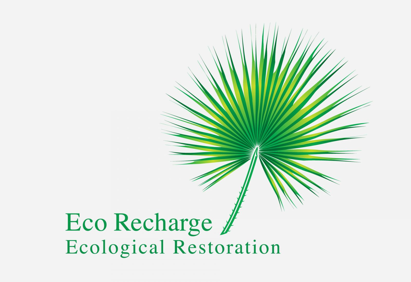 Logo design and branding for Eco Recharge