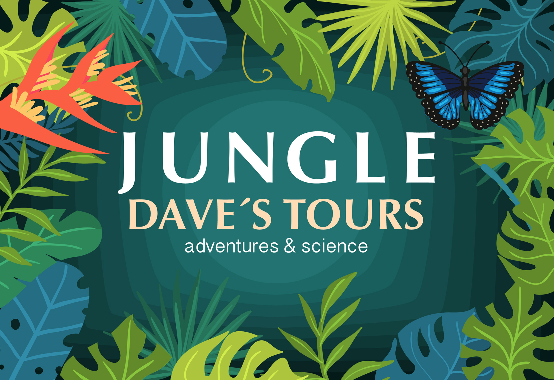 Jungle Dave's Tours