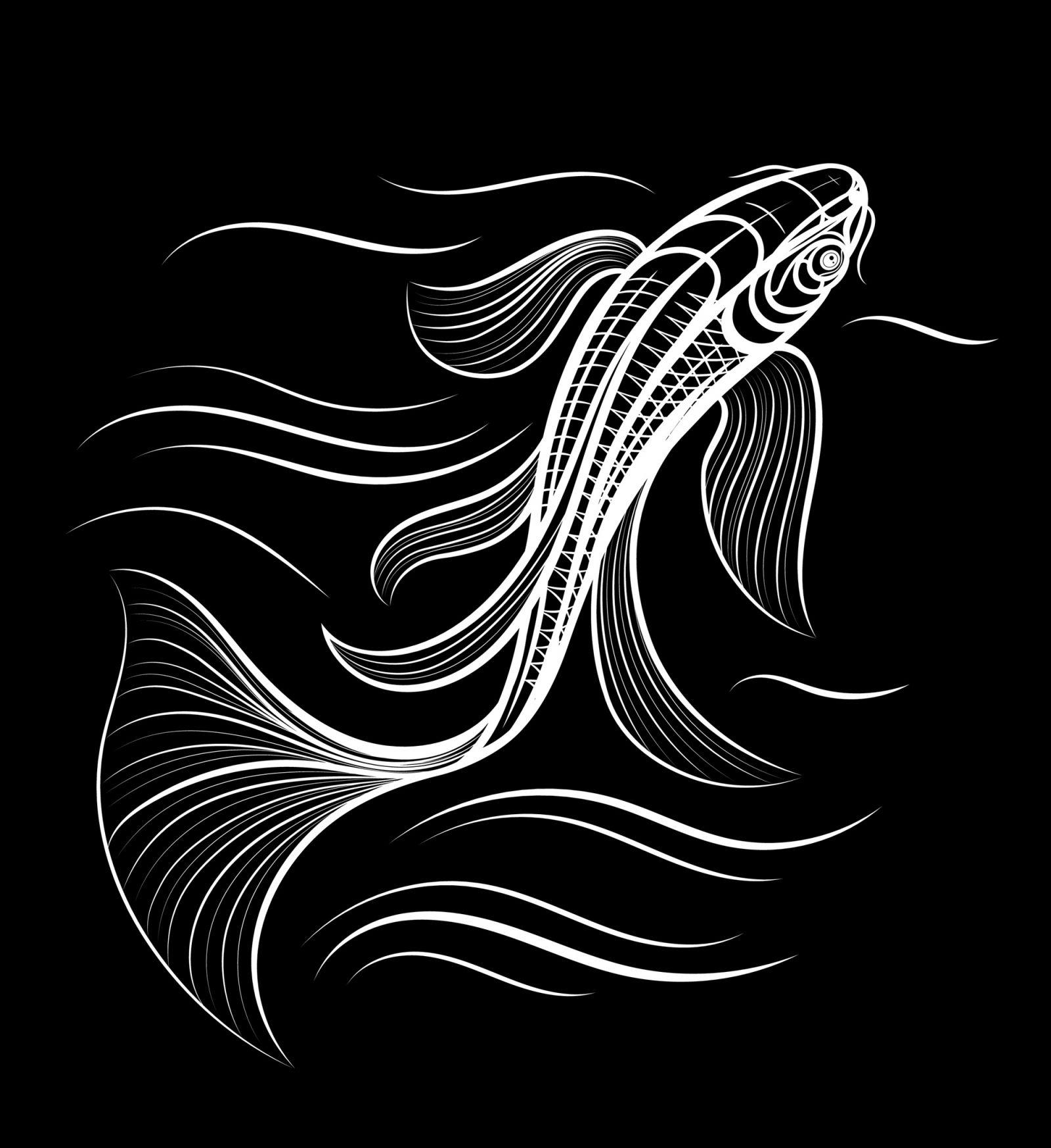 Koe vector artwork