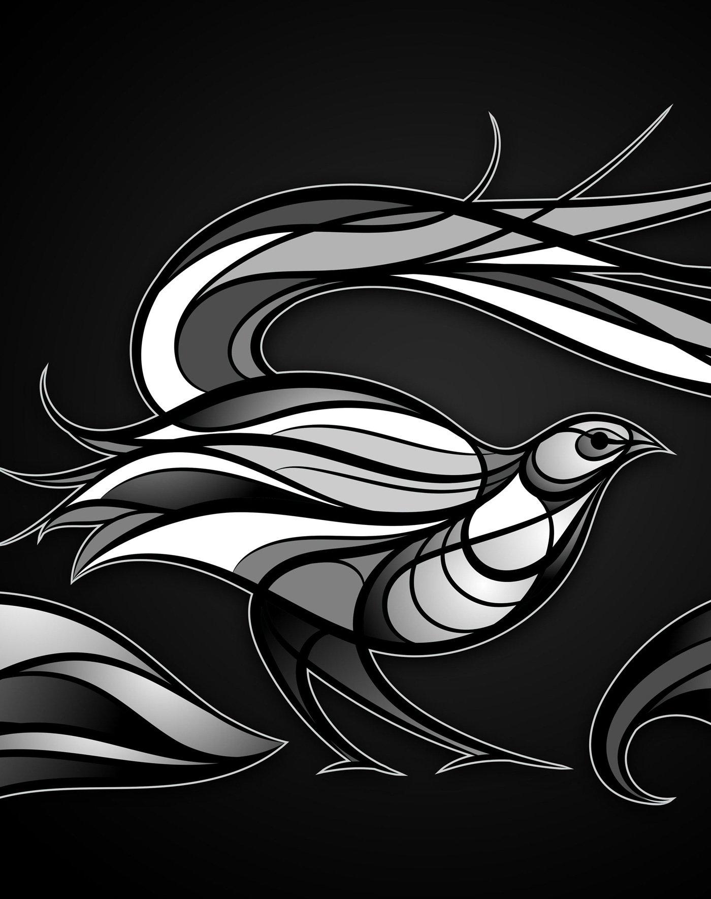 Lyrebird vector artwork