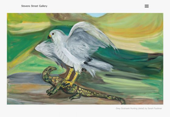 Stevens Street Gallery